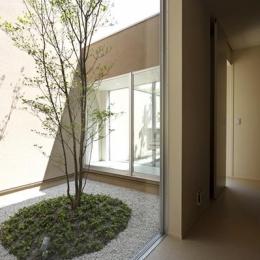 名古屋市Y邸・高級感と重層感を併せもつコートハウス住宅 (ガラス張りのコート)