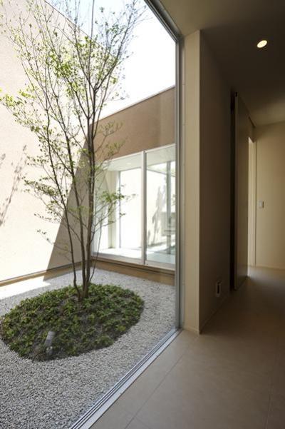 ガラス張りのコート (名古屋市Y邸・高級感と重層感を併せもつコートハウス住宅)