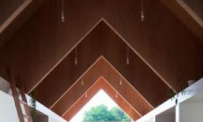 『コヤノスミカ』趣味を楽しめる空間、ゆったり寛げる空間 (LDK-連続するV梁)