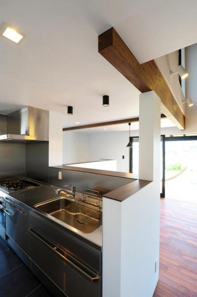 ステンレスの対面式キッチン (『南アルプスの家』光・風が通り抜ける住まい)