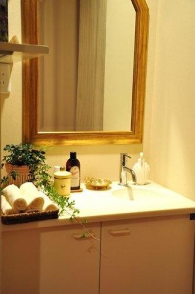 エステサロンスペース(洗面スペース) (2世帯住宅+エステサロンの併用住宅)