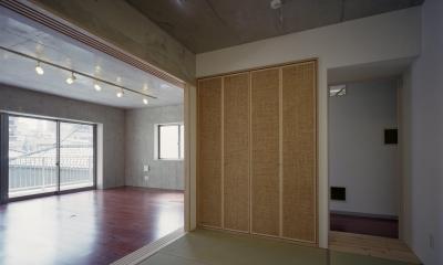東京都台東区 T邸 (開放的な和室)