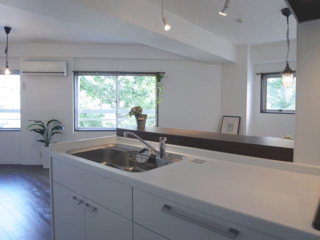 ヴィンテージマンションに住まうの部屋 イチョウ並木を望める対面キッチン