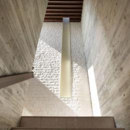 HOUSE T 『公園を臨むゲストハウス』 (階段室)