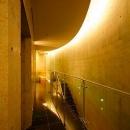 『N Residence』柔らかな光に満たされた二世帯住宅