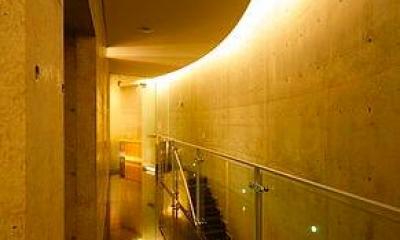 『N Residence』柔らかな光に満たされた二世帯住宅 (クールな2階ホール-2)
