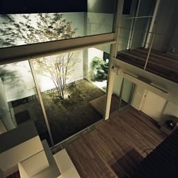 方 庵 (吹き抜けから庭を眺める)