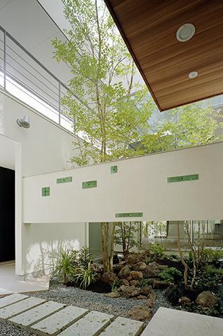 MANAの部屋 シンボルツリーのある中庭