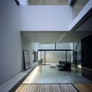 目白の家の写真 テラス