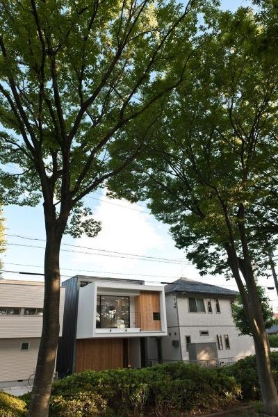 緑に浮かぶの家 (遠景)