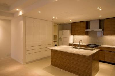 専有面積200m2のビンテージマンションフルリフォーム (動きやすさや収納力を重視したキッチン)