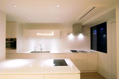 開放的なキッチン (あたたかみある素材と照明)