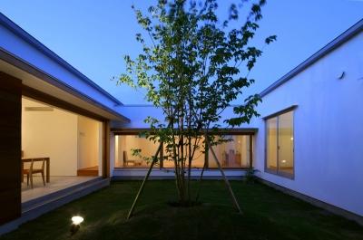 海東の家 (中庭)