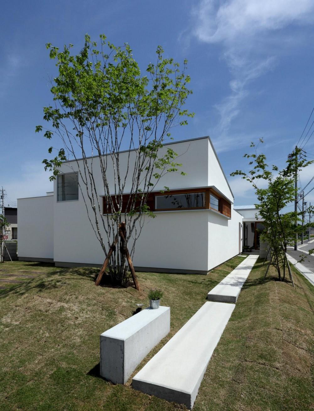 海東の家/地に近い暮らし 中庭が広がる住まい (アプローチ)