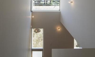 ながよしの家/庭の緑・公園の桜同時に楽しむビューハウス (階段)