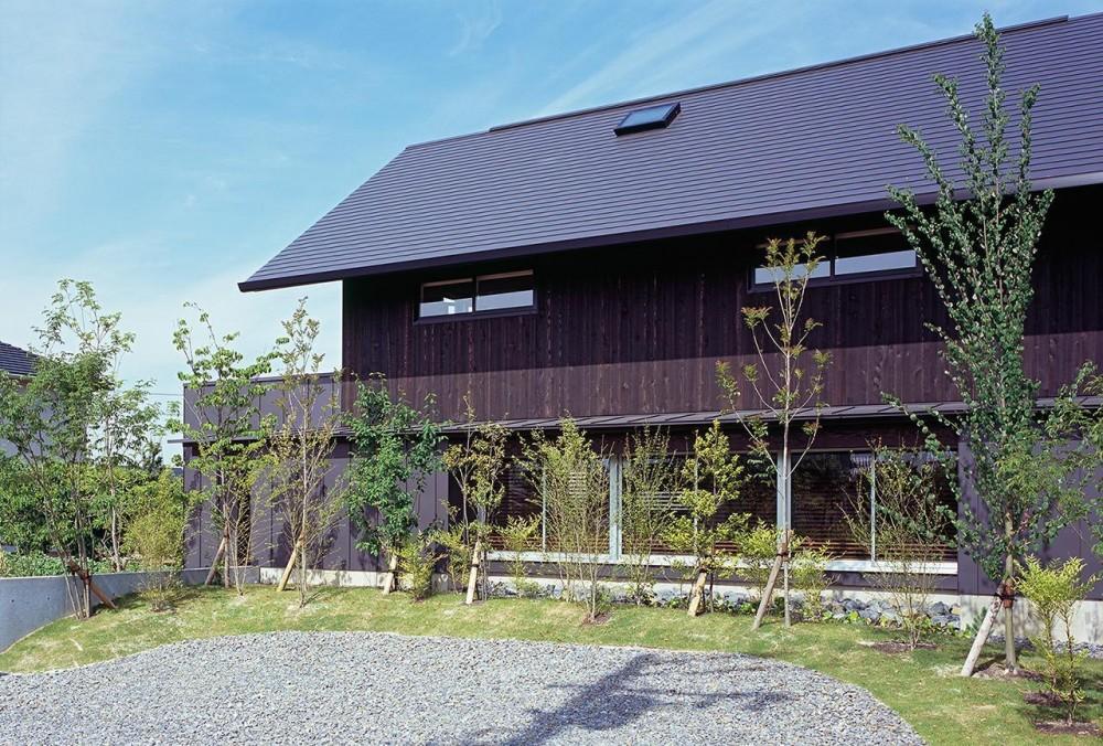 『蒲郡の家』~土間のダイニングキッチンのある家~ (雑木林の向こうにある連窓)