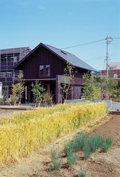 『蒲郡の家』~土間のダイニングキッチンのある家~ (麦畑につつまれた家)