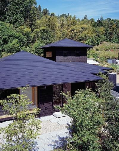 『塩河の家』〜里山の風景と暮らす家〜 (山の風景に似合う屋根のデザイン)