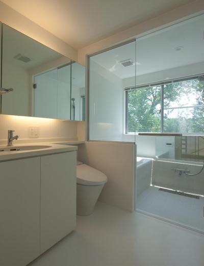 スタイリッシュなデザイン住宅・光の満ちる贅沢空間:杉並区K様邸 (バス トイレ)