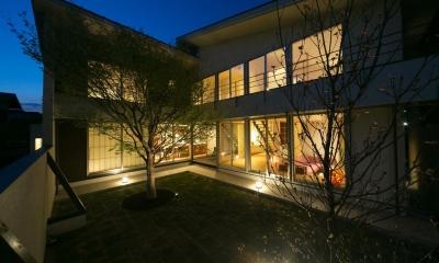 中庭夜景|眺めのいい窓