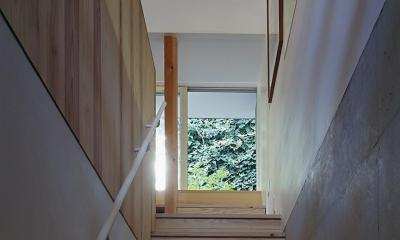『岳見の家』~雑木林につつまれた住まい~ (階段上には庭の植栽が)