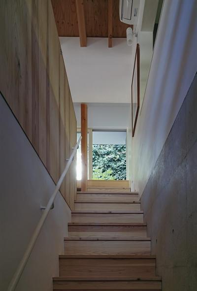 階段上には庭の植栽が (『岳見の家』~雑木林につつまれた住まい~)
