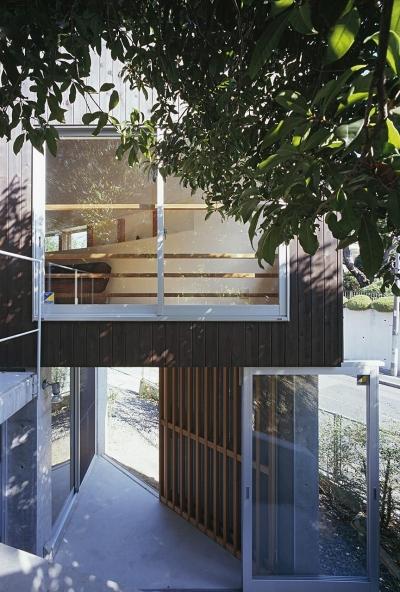 緑に囲まれた地階のテラス (『岳見の家』~雑木林につつまれた住まい~)