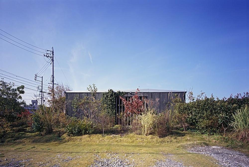 緑の小山の上にある四角い小屋・外観 (『知多の家』~緑のオアシス~(gallery & dining cafe))