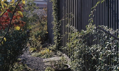『知多の家』~緑のオアシス~(gallery & dining cafe) (植物がドンドン建築を侵食する様子)