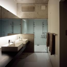 鷺沼の家 (バスルーム)