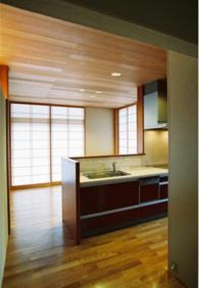連層の家 (シンプルなキッチン)