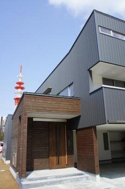 コンパクトかつ有機的な家 (杉板で囲まれたエントランスボックス)