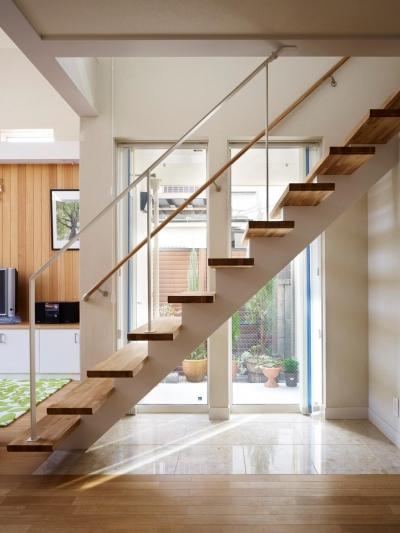 スケルトン階段と光庭 (階段)