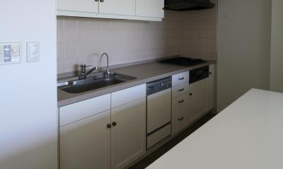 M邸 (清潔感のあるキッチン)
