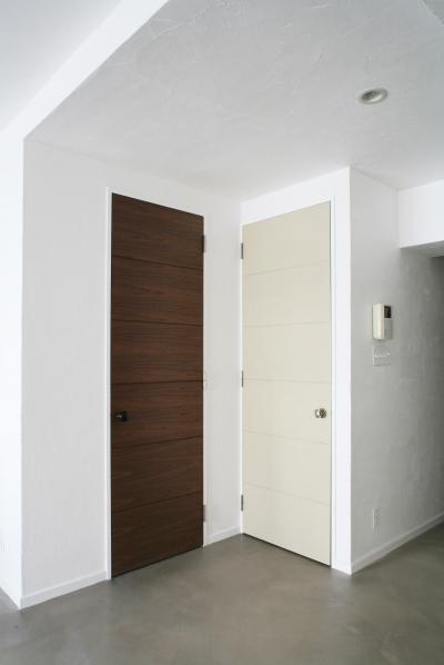 色違いで印象を変えるドア (Y邸)