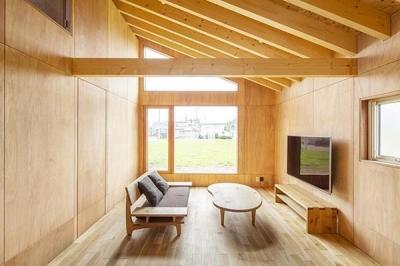 当別の家 シンプルな北国の住まい|新築 (木を感じるリビング)