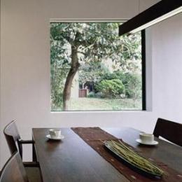 寛の家52 (ダイニングから柿の木を望む)