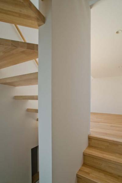 階段 (世田谷の住宅3)