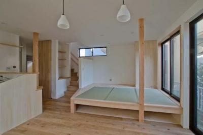畳のあるリビング (世田谷の住宅2)