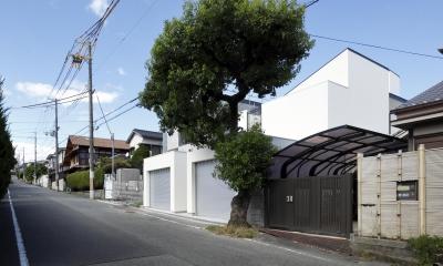 木漏れ日のプールサイドハウス (白いガレージハウス)
