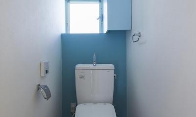 大屋根の家 (トイレ)