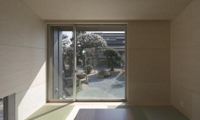 城島の家 (和室から庭を見る (撮影:岡本公二))