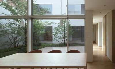 LucentCourtHouse (居間 (撮影:岡本公二))