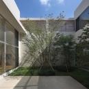 LucentCourtHouseの写真 中庭 (撮影:岡本公二)