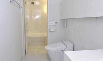 スケルトン・インフィルの家 (洗面・トイレ・浴室)