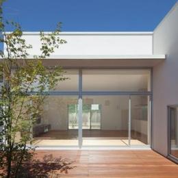 STEP HOUSE (中庭から居間を見る (撮影:岡本公二))