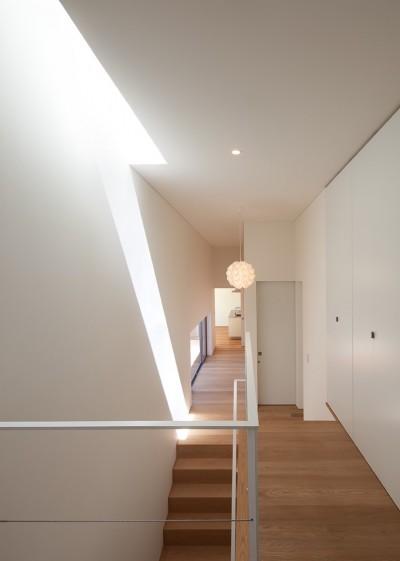 踊り場から階段を見る (STEP HOUSE)