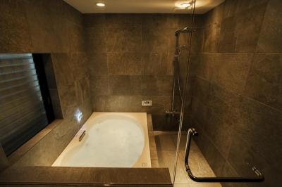 バスルーム (フロアごとに異なる顔を持つ遊び心満載の住まい)