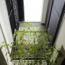 植栽のある中庭