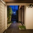 CAT HOUSE (猫と暮らす家)の写真 庭木とタイルが調和した庭